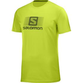 Salomon Blend Logo Bluzka z krótkim rękawem Mężczyźni zielony